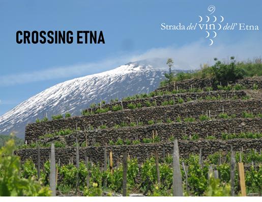 Crossing Etna... con la strada del vino | Sicilia da Gustare