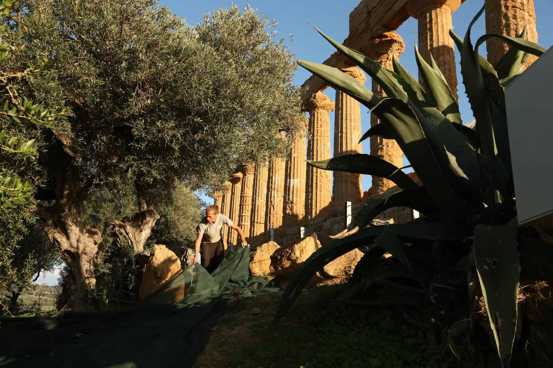 Val Paradiso - Naro Agrigento